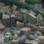 Jardim Rupestre